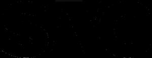 лого snc сми о нас